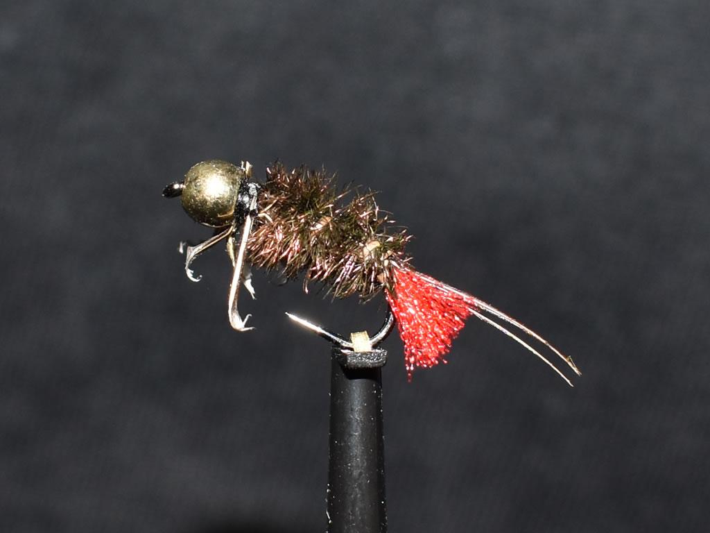 N0012 Nymph