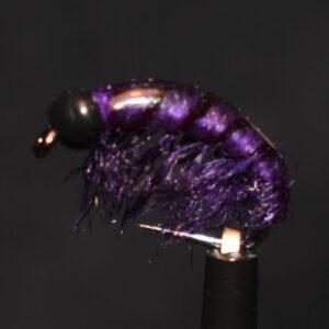 N0034 Shrimp
